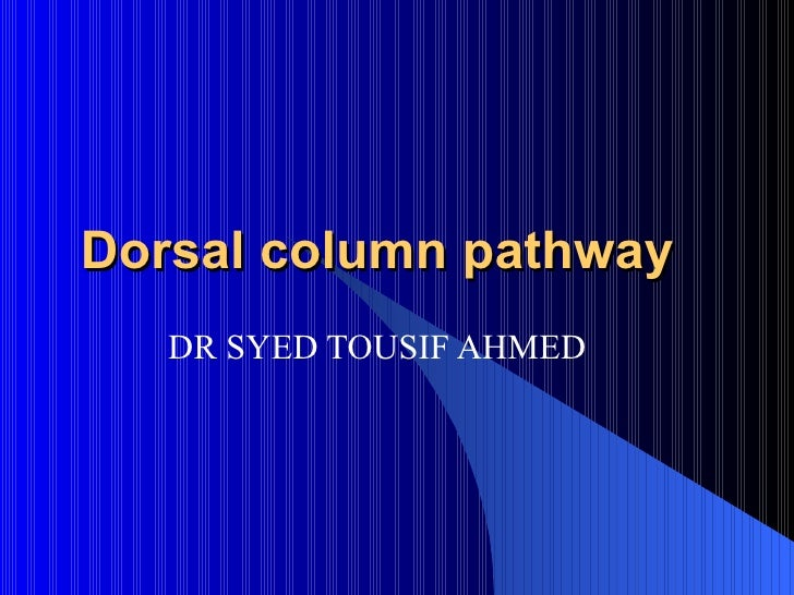 Dorsal column pathway DR SYED TOUSIF AHMED