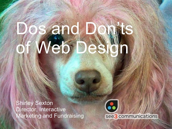 Dos and Dont's of Web Design Sexton