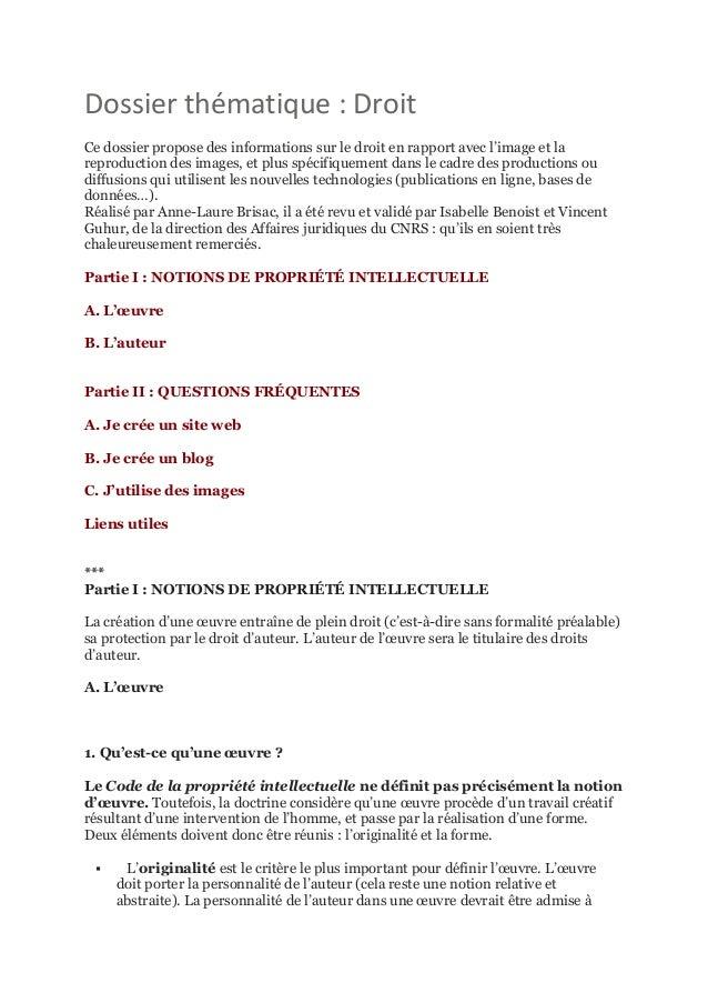 Dossier thématique : Droit Ce dossier propose des informations sur le droit en rapport avec l'image et la reproduction des...
