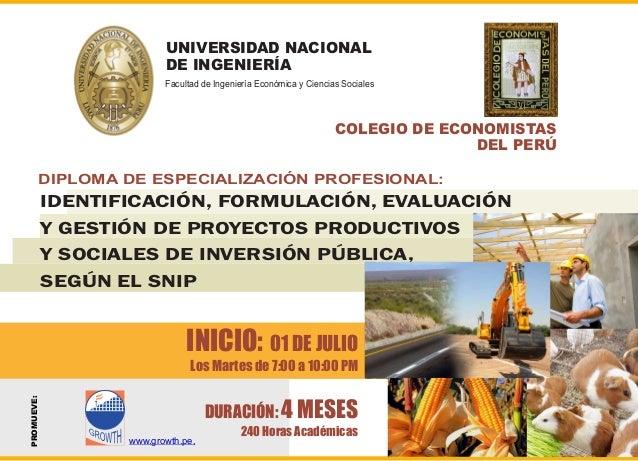 DIPLOMA DE ESPECIALIZACIÓN PROFESIONAL: IDENTIFICACIÓN, FORMULACIÓN, EVALUACIÓN Y GESTIÓN DE PROYECTOS PRODUCTIVOS Y SOCIA...
