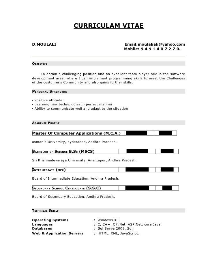 dot net resume