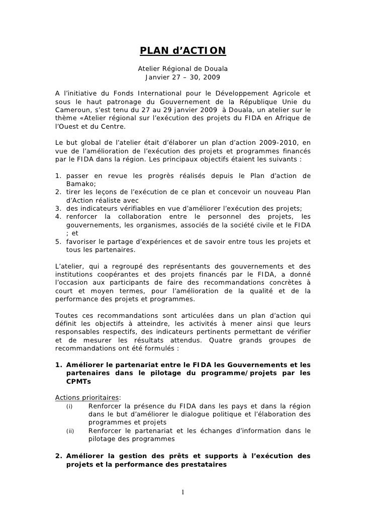 PLAN d'ACTION                         Atelier Régional de Douala                           Janvier 27 – 30, 2009  A l'init...