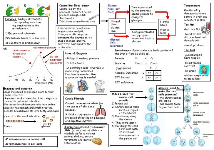 edexcel a2 biology coursework unit 6 Conjunction with the edexcel advanced subsidary gce in biology (8bi01), edexcel unit 3 coursework guide and examples from edexcel.