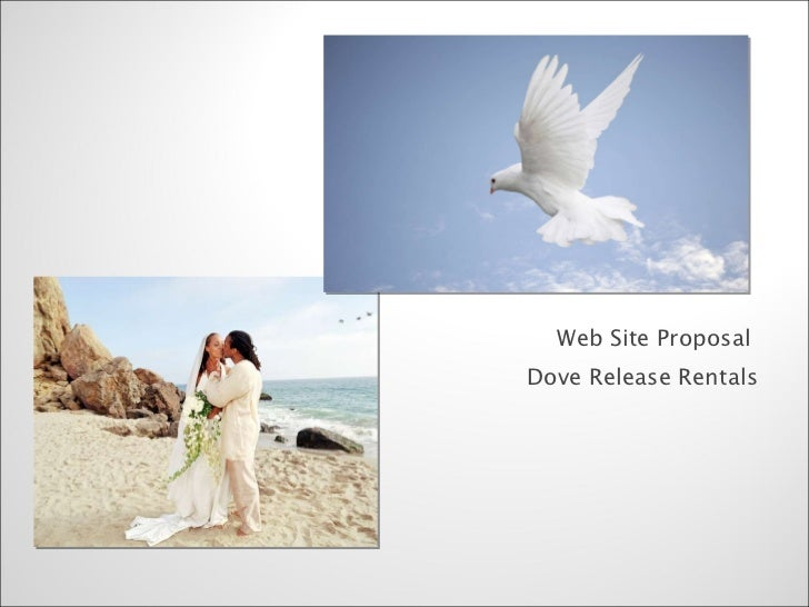 Web Site Proposal for Dove Rental Co.