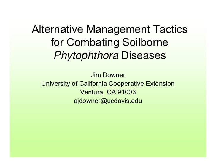 Alternative Management Tactics     for Combating Soilborne      Phytophthora Diseases                    Jim Downer  Unive...