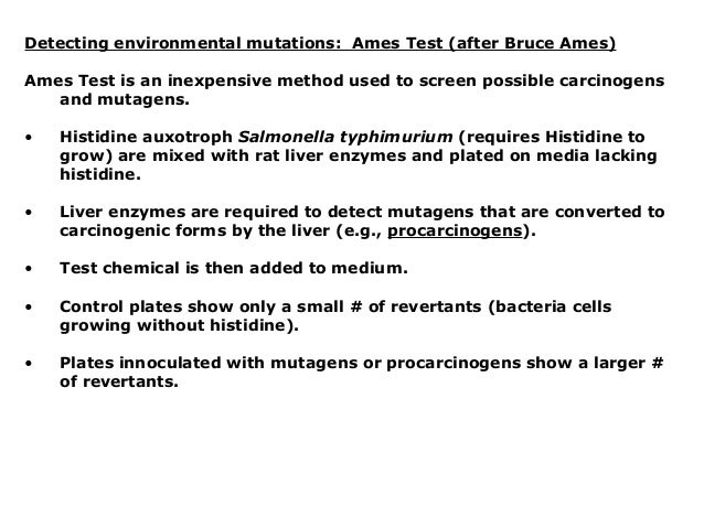 """the ames test testing carcinogens using bacteria essay """" (ames et al , 1973  maron and ames, 1983 hofnung and qullardet, 1986) the trials that will be held in this lab will be tested under the spot-overlay ames test it is a widely used technique for screening potential carcinogens by testing for mutagenesis of bacteria."""