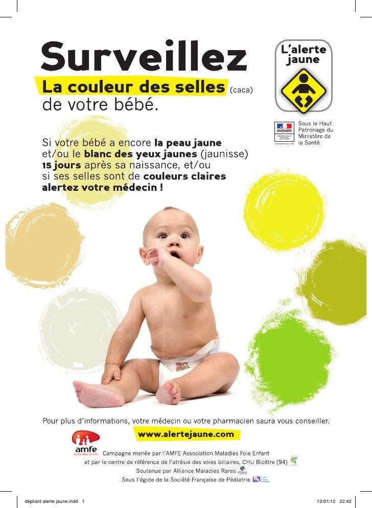 dépliant alerte jaune.indd 1   12/01/12 22:42