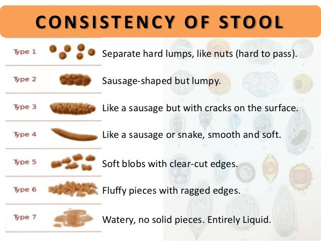 Whats a Healthy Bowel Movement Check Out the Stool Chart