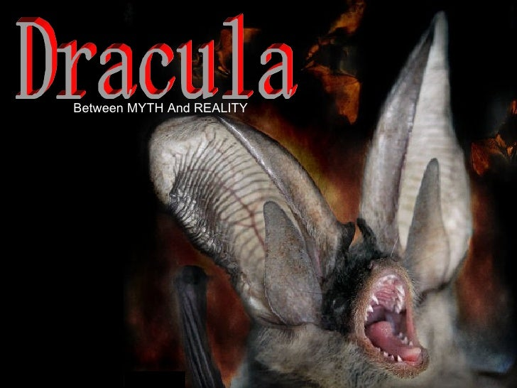 Dracula, My Love!