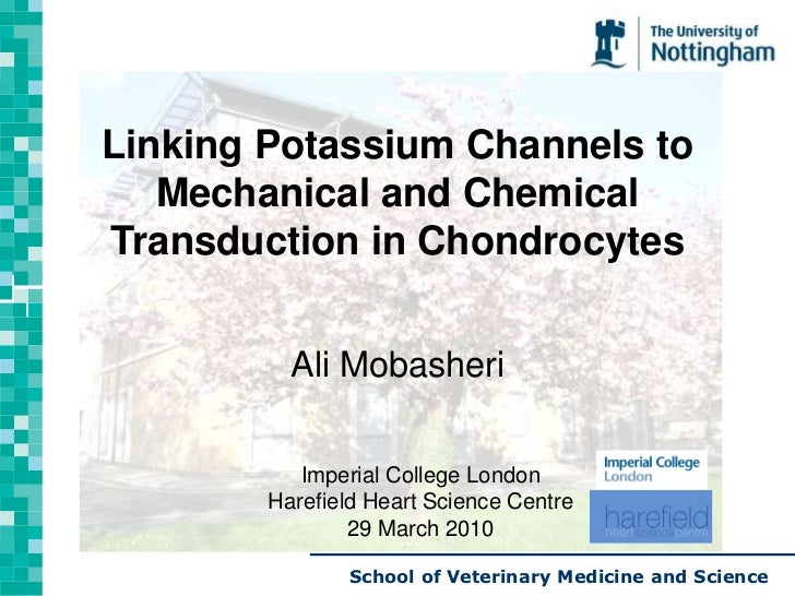 Dr. A. Mobasheri   Seminar 29 March 2010
