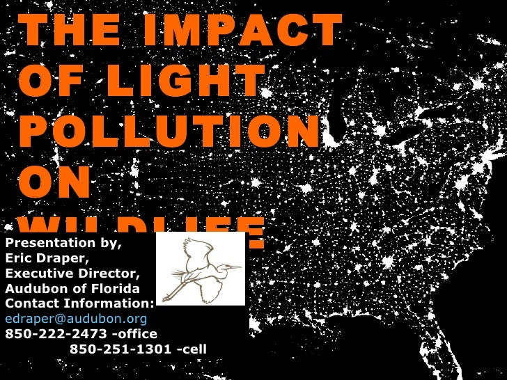 THE IMPACT OF LIGHT POLLUTION ON WILDLIFE Presentation by, Eric Draper,  Executive Director, Audubon of Florida  Contact I...