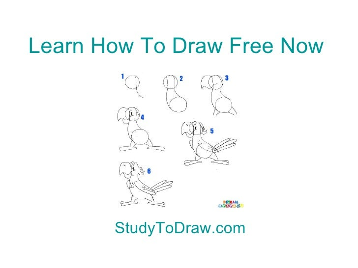 Drawing Lessons Step By Step