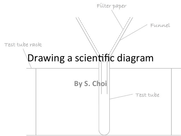 drawing scientific diagramdrawing a scien fic diagram