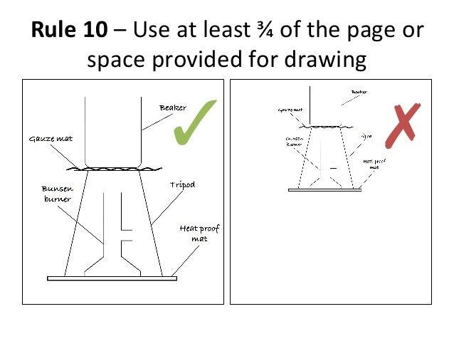 drawing scientific diagram    diagram ✓ ✗