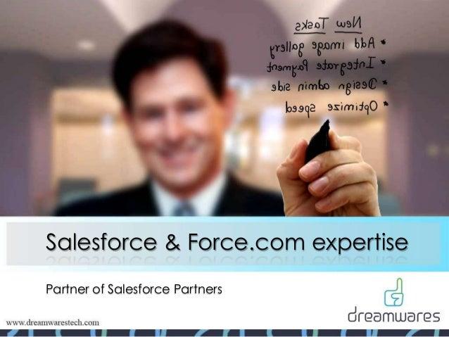 Salesforce & Force.com expertise Partner of Salesforce Partners