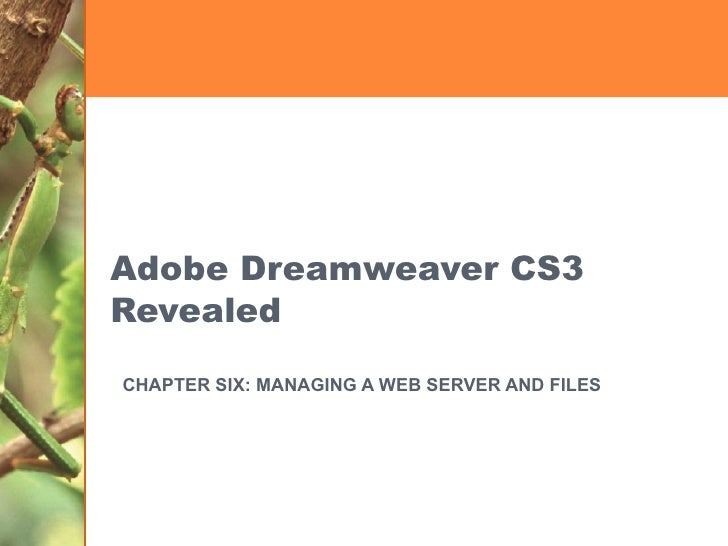 Adobe Dreamweaver CS3 Revealed CHAPTER SIX: MANAGING A WEB SERVER AND FILES