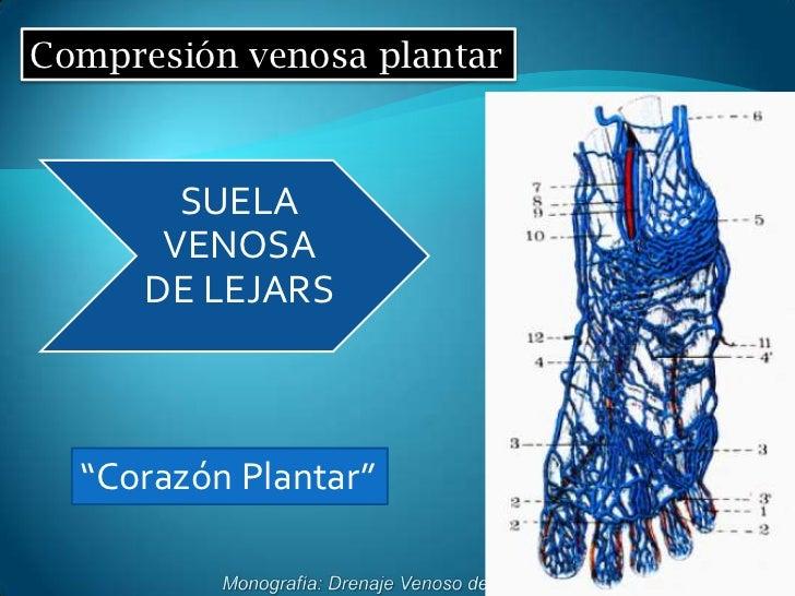 La enfermedad crónica de los vasos de las extremidades inferiores