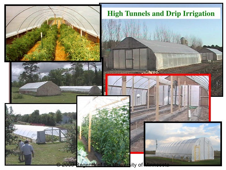 Drip Irrigation and High Tunnels