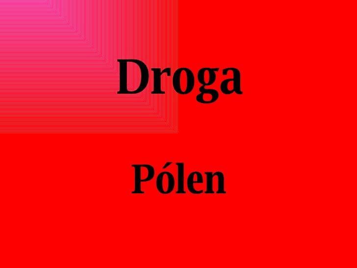 Droga Pólen