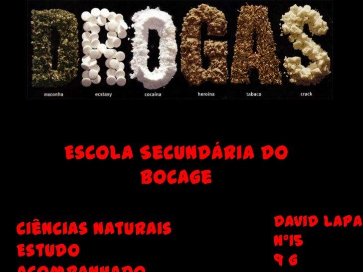 Escola Secundária do Bocage<br />David Lapa  <br />nº15  <br />9 G<br />Ciências Naturais<br />Estudo Acompanhado<br />
