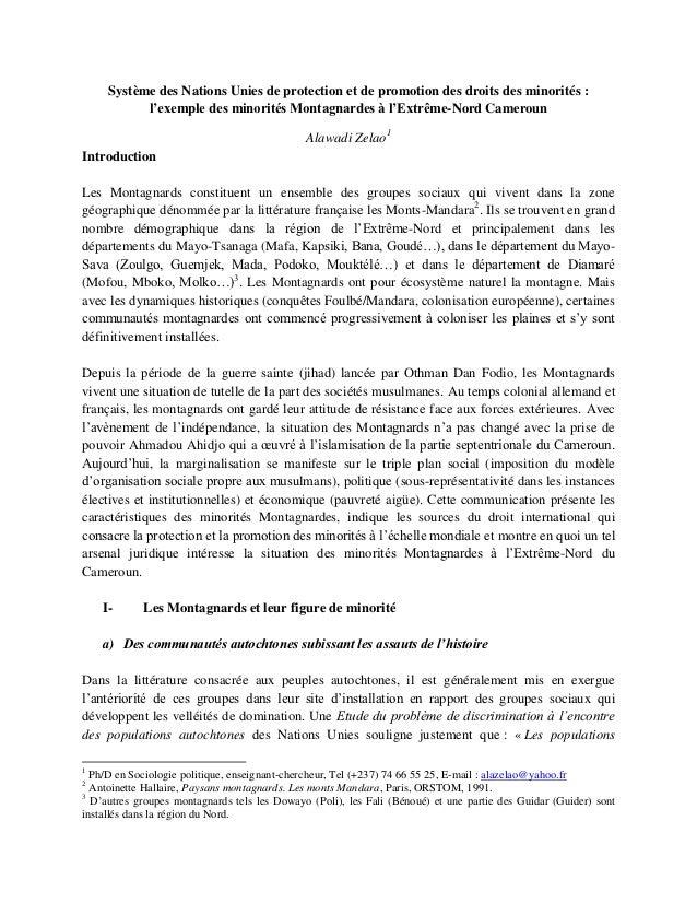 Système des Nations Unies de protection et de promotion des droits des minorités :           l'exemple des minorités Monta...