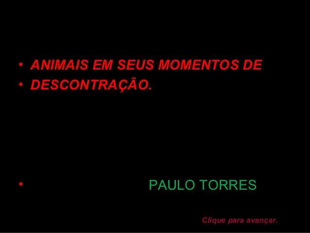 • ANIMAIS EM SEUS MOMENTOS DE• DESCONTRAÇÃO.•              PAULO TORRES                     Clique para avançar.