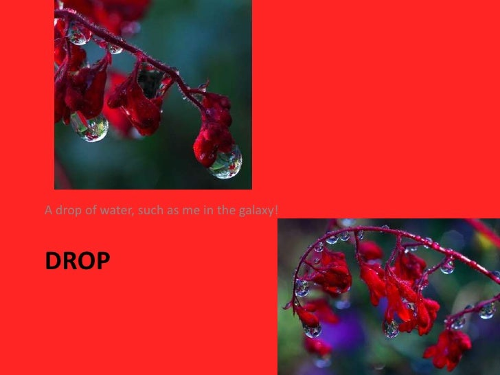 DROP<br />A drop of water, such as me in the galaxy!<br />