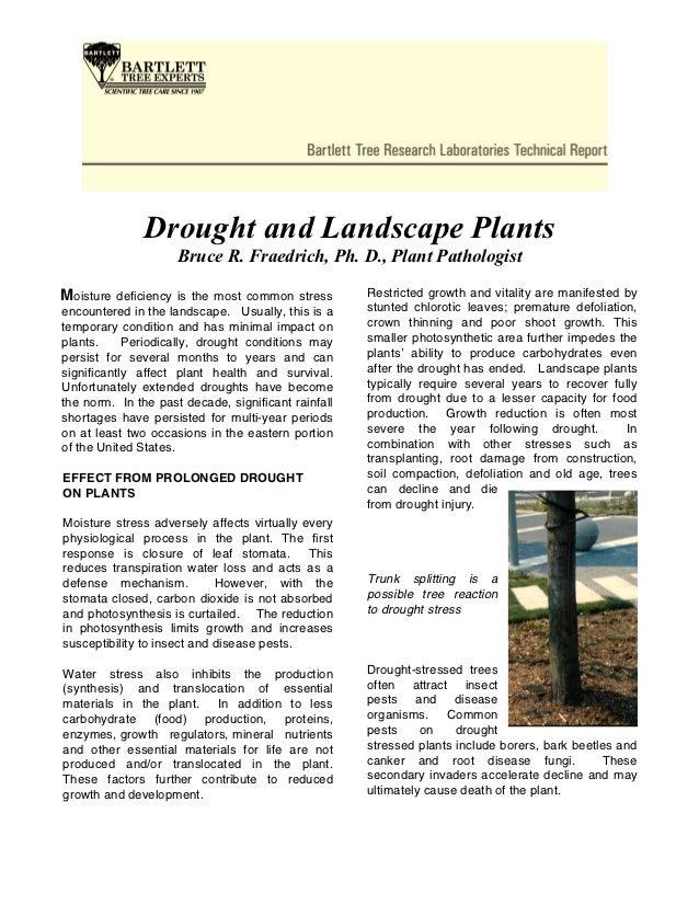 Drought and Landscape Plants                     Bruce R. Fraedrich, Ph. D., Plant PathologistMoisture   deficiency is the...