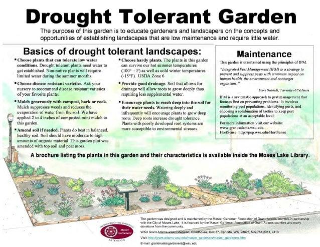 Drought Tolerant Garden - Washington State University, Pullman