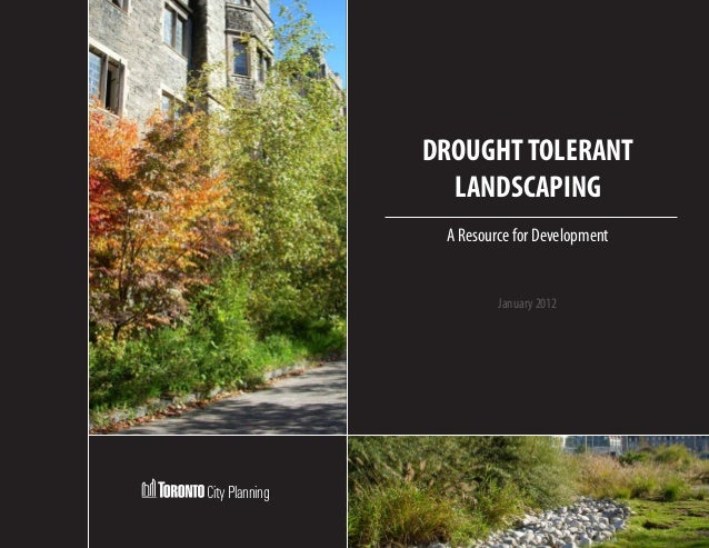 DROUGHT TOLERANT                  LANDSCAPING                 A Resource for Development                         January 2...