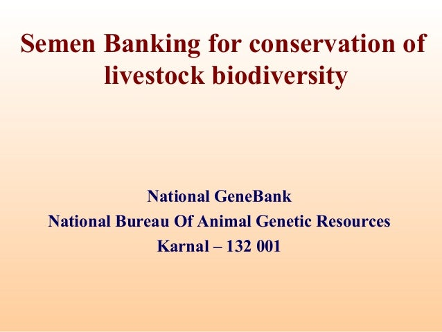 Semen Banking for conservation of  livestock biodiversity