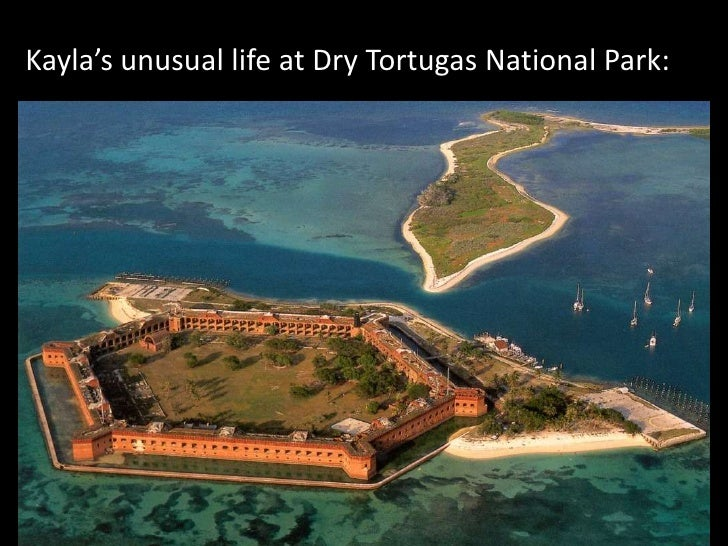 Kayla's unusual life at Dry Tortugas National Park:<br />