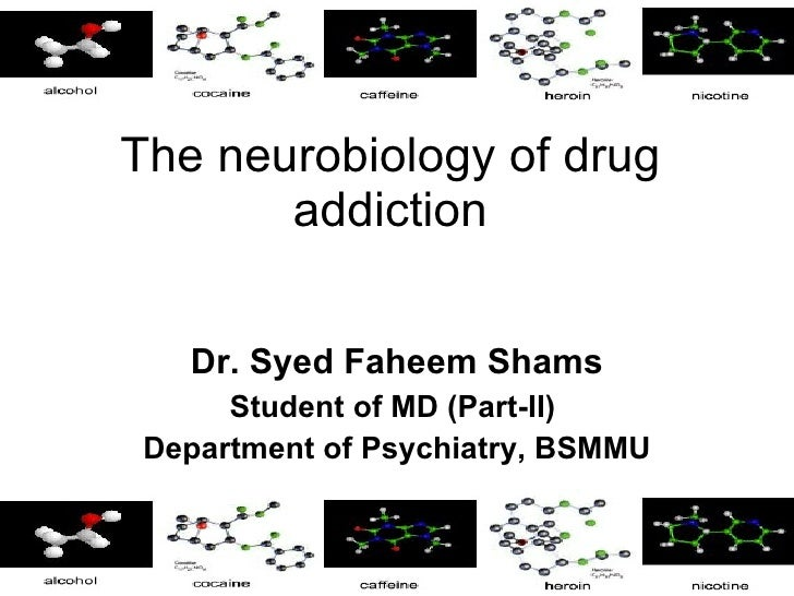 Drug addiction neurobiology