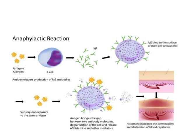 adverse drug reaction types pdf