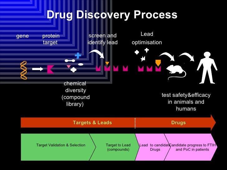 drug development process - gse.bookbinder.co, Powerpoint templates