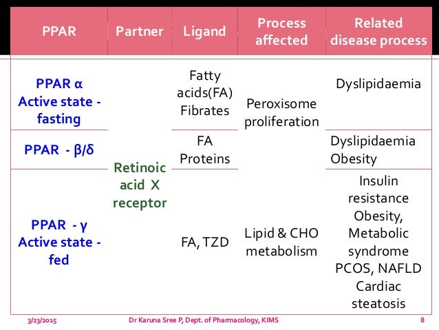 catabolism of fatty acids and steroids