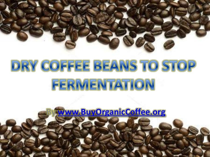 Dry Coffee Beans to Stop Fermentation