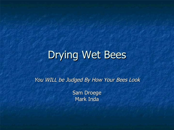 Drying Wet Bees You WILL be Judged By How Your Bees Look Sam Droege Mark Inda
