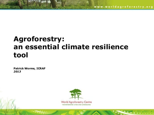 Drylands security and agroforestry