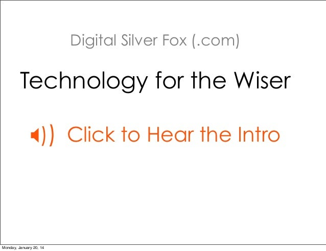 Digital SIlver Fox Introduction