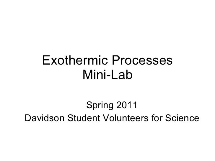 Exothermic Processes Mini-Lab Spring 2011 Davidson Student Volunteers for Science