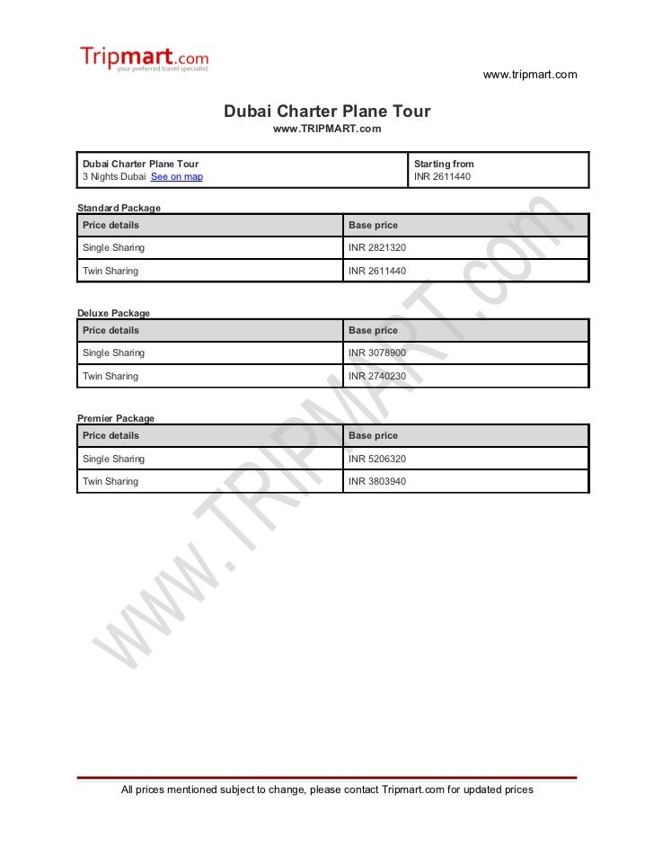 Dubai Charter plane tour