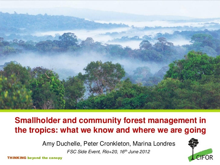 Smallholder and community forest management in   the tropics: what we know and where we are going                Amy Duche...