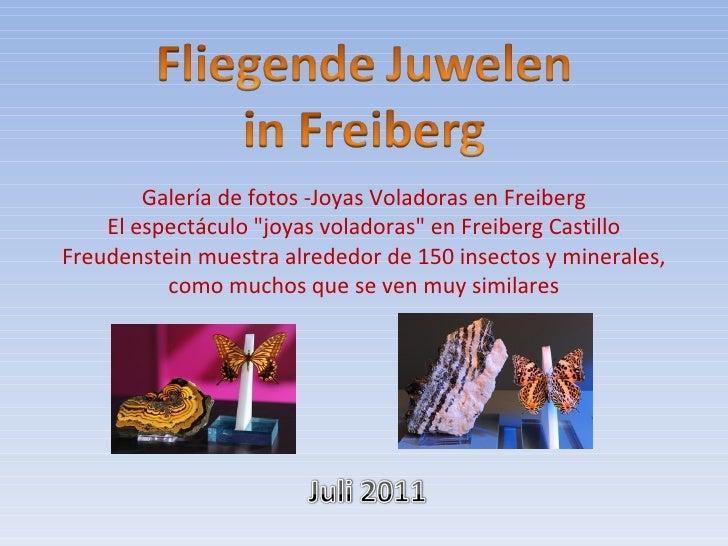 """Galería de fotos -Joyas Voladoras en Freiberg    El espectáculo """"joyas voladoras"""" en Freiberg CastilloFreudenstein muestra..."""