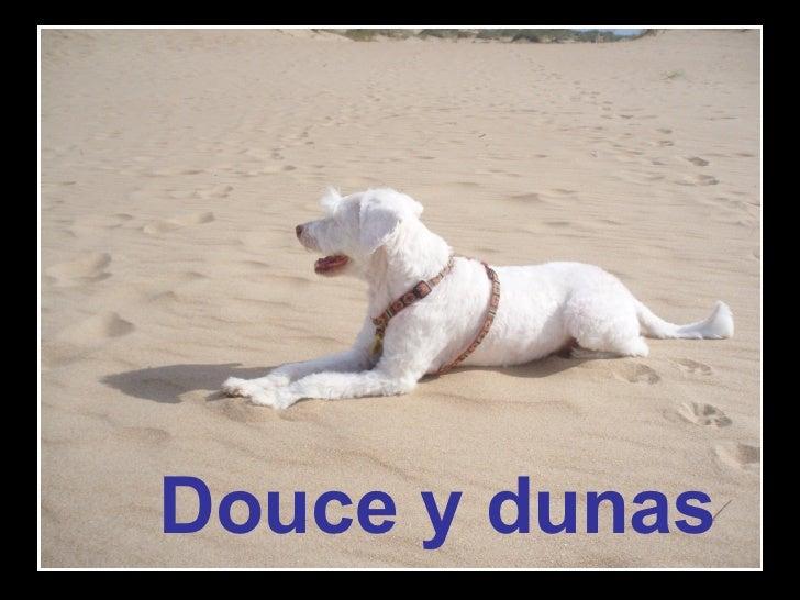 Douce y dunas