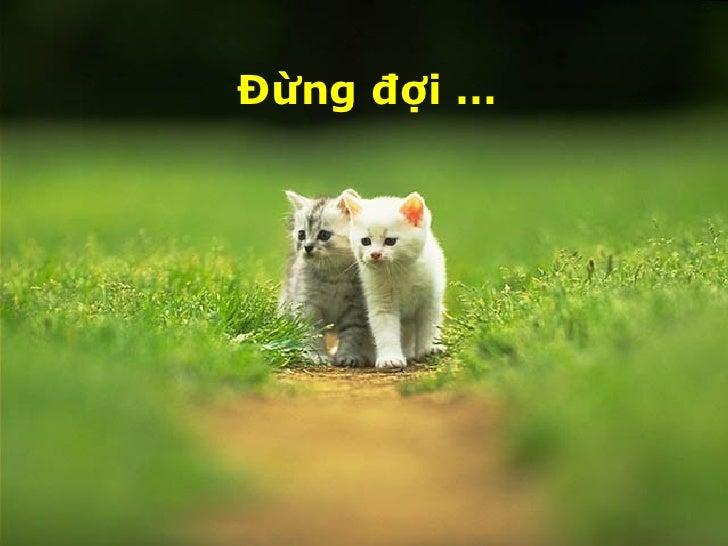Bó Hoa TìNh Ban Pl