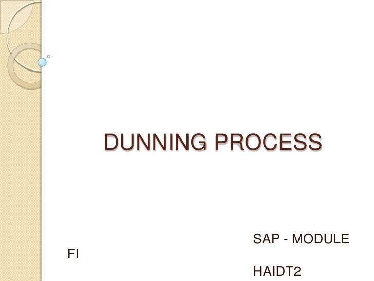 DUNNING PROCESS<br />SAP - MODULE FI<br />HAIDT2<br />