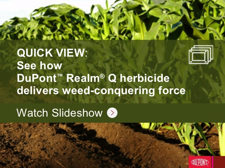 QUICK VIEW :  See how  DuPont ™  Realm ®  Q herbicide  delivers weed-conquering force Watch Slideshow