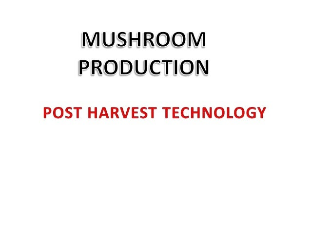 • MUSHROOM PRODUCTION • TOPIC: POST HARVEST TECHNOLOGY • COURSE NO.: PATH 486 • COURSE TITTLE: Mushroom Production • COURS...