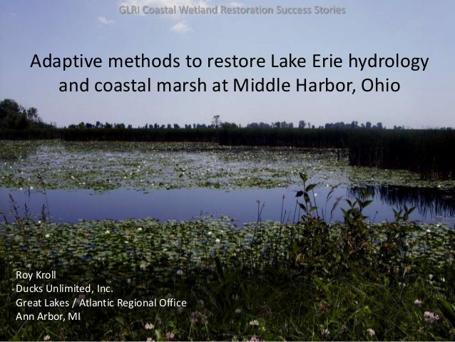 Roy KrollDucks Unlimited, Inc.Great Lakes / Atlantic Regional OfficeAnn Arbor, MIGLRI Coastal Wetland Restoration Success ...
